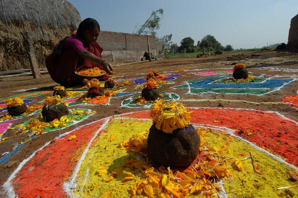 Makar-Sankranti-Gobbemma-desibantu